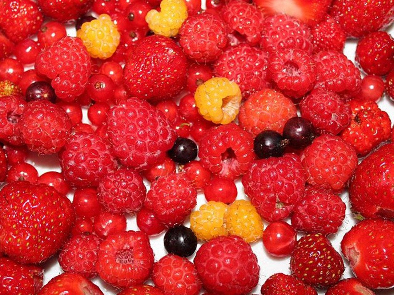 Fruits rouges (c) Wikipedia