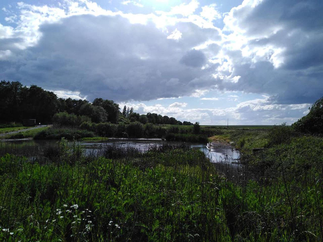 Bassin d'orage Fexhe (c) Nathalie Herman