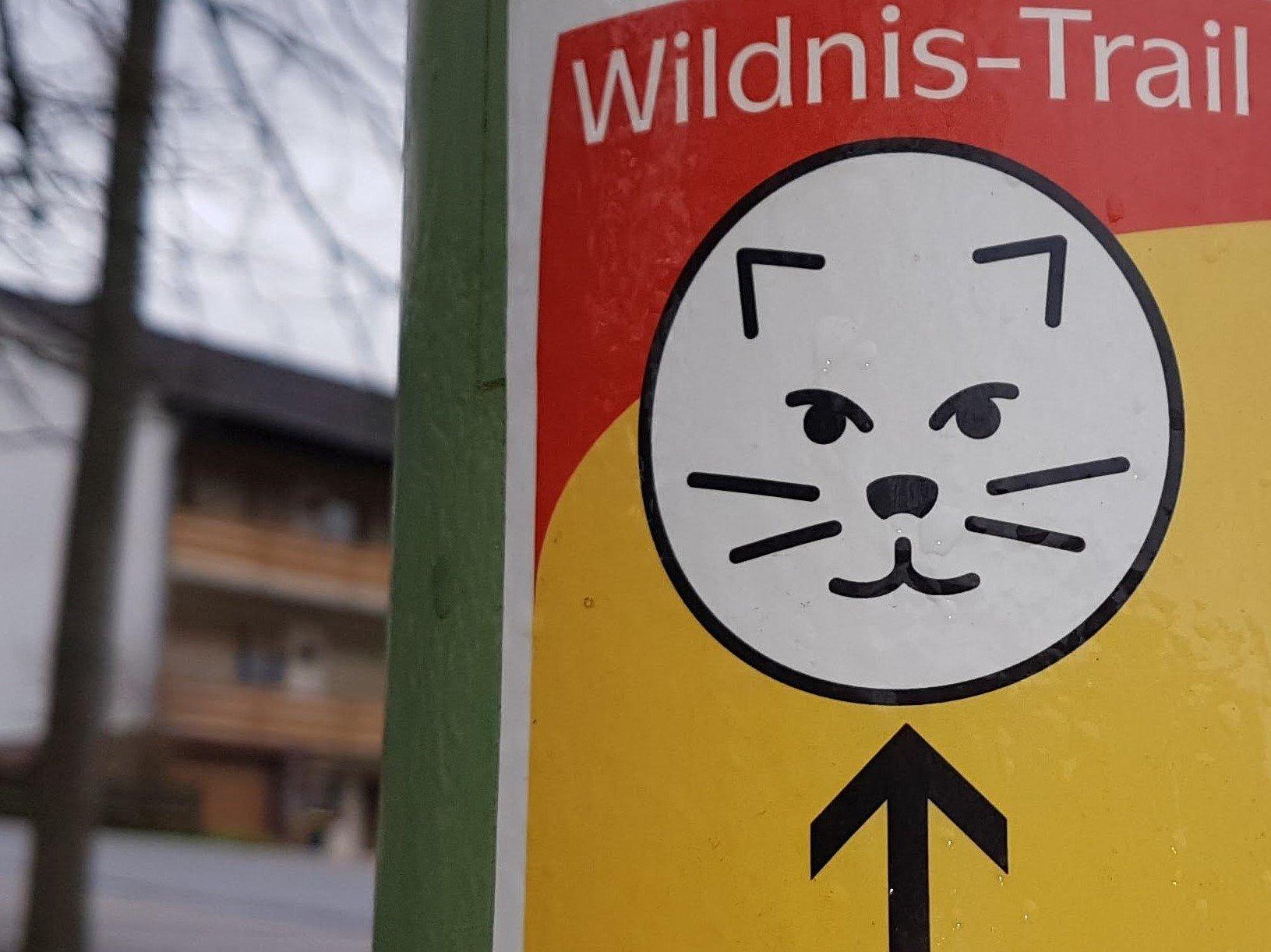 Wilnis Trail (c) Alain Demaret